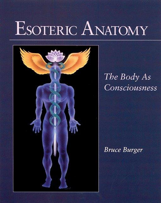 Esoteric Anatomy: The Body as Consciousness the Body as Consciousness als Taschenbuch