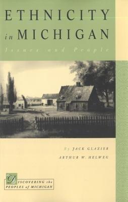 Ethnicity in Michigan als Taschenbuch