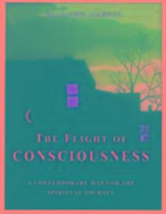 The Flight of Consciousness als Taschenbuch