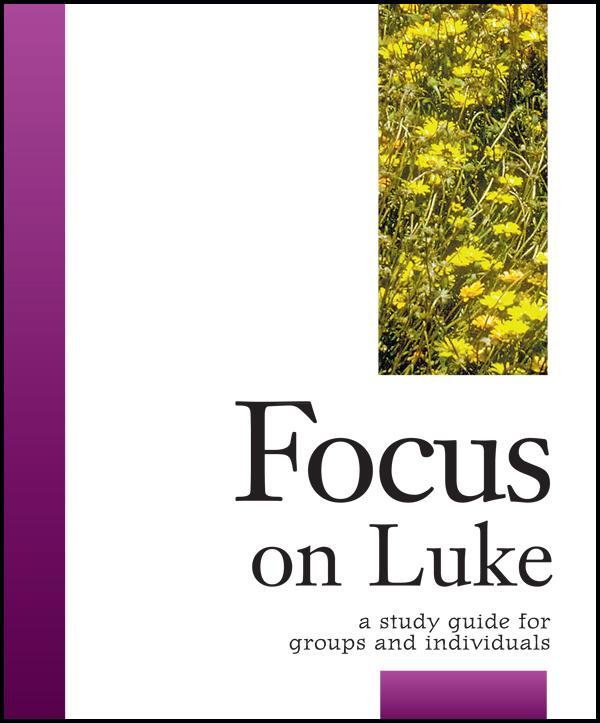 Focus on Luke als Taschenbuch