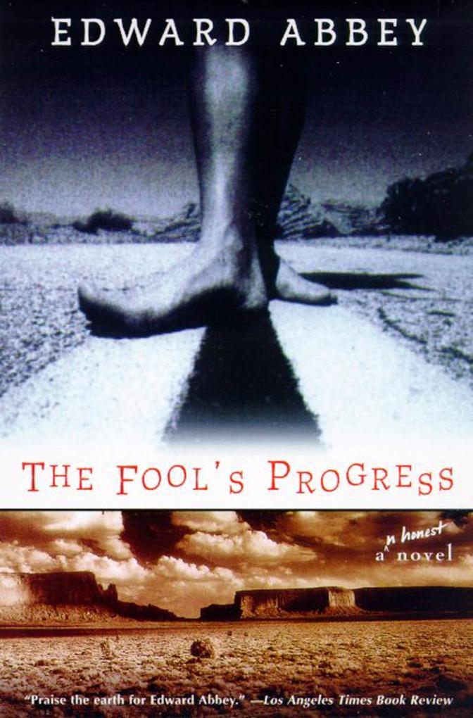 The Fool's Progress: An Honest Novel als Taschenbuch