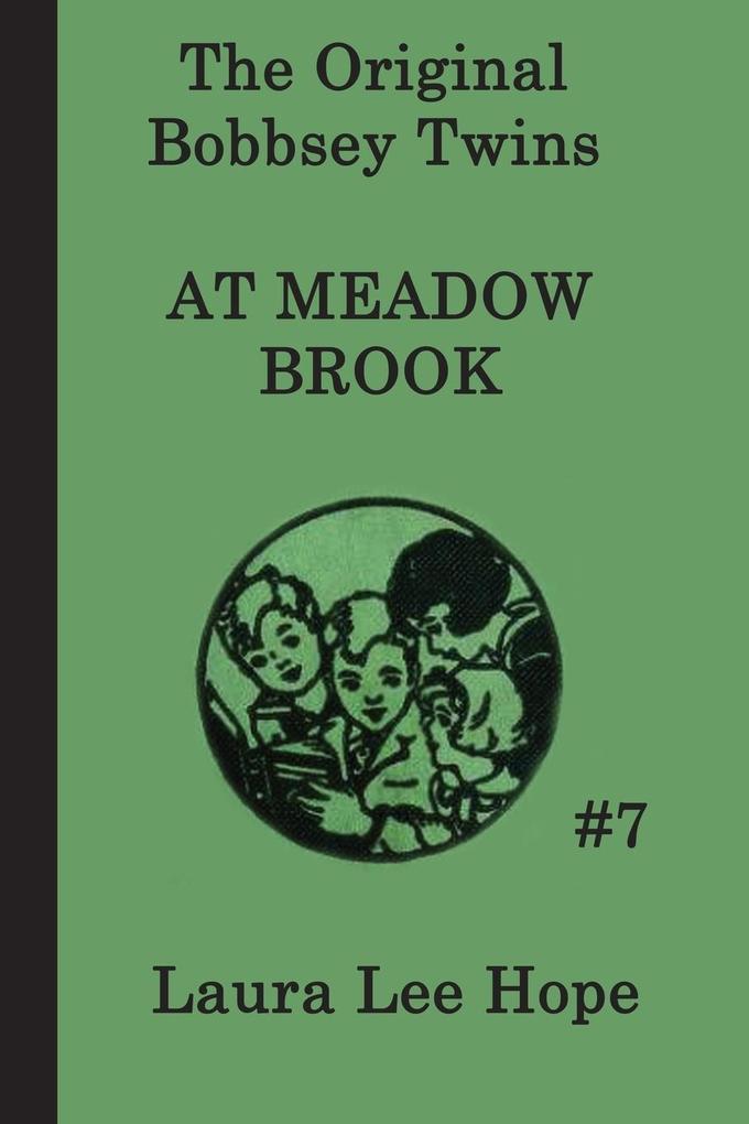 The Bobbsey Twins at Meadow Brook als Taschenbuch von Laura Lee Hope
