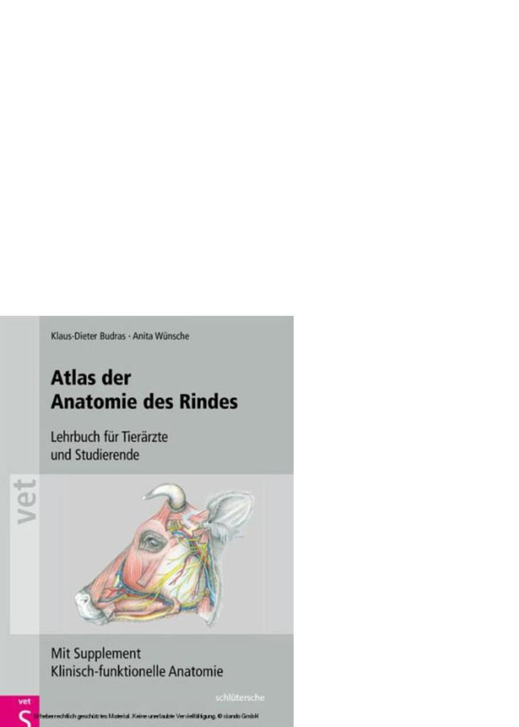 Berühmt Klinische Anatomie Für Medizinstudenten Galerie - Anatomie ...