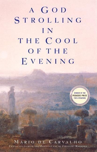 A God Strolling in the Cool of the Evening als Taschenbuch