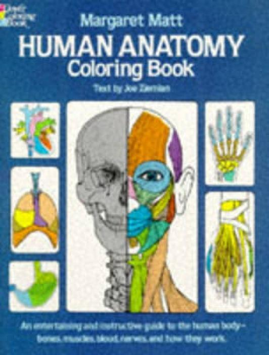 Human Anatomy Coloring Book als Buch