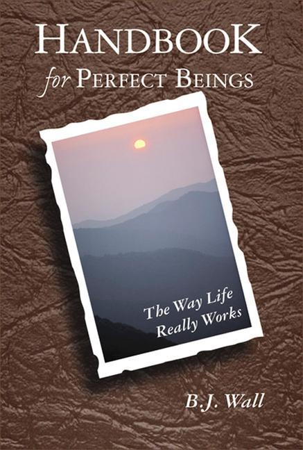 Handbook for Perfect Beings: The Way Life Really Works als Taschenbuch