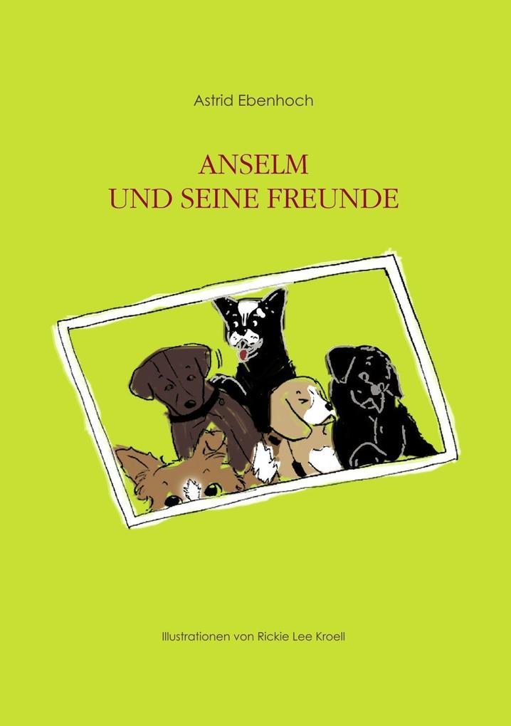Anselm und seine Freunde als eBook