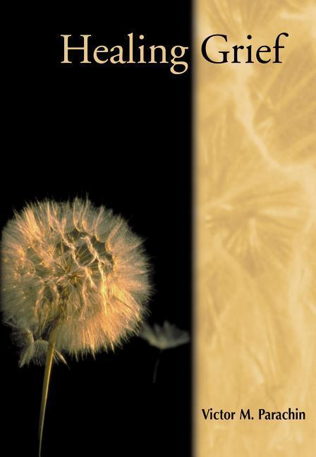 Healing Grief als Taschenbuch
