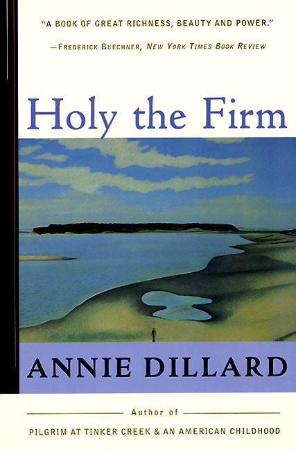 Holy the Firm als Taschenbuch