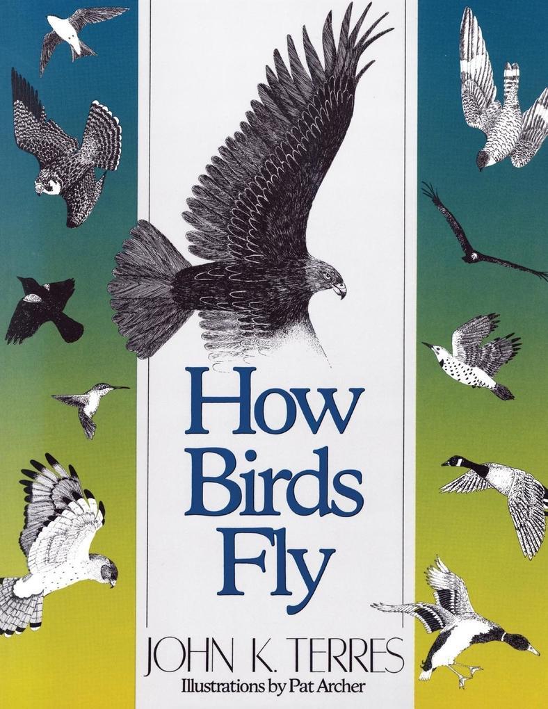 How Birds Fly als Taschenbuch