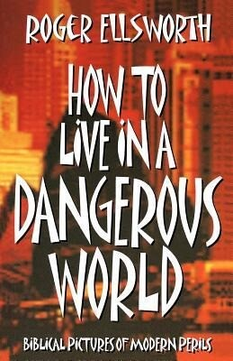 How to Live in a Dangerous World als Taschenbuch