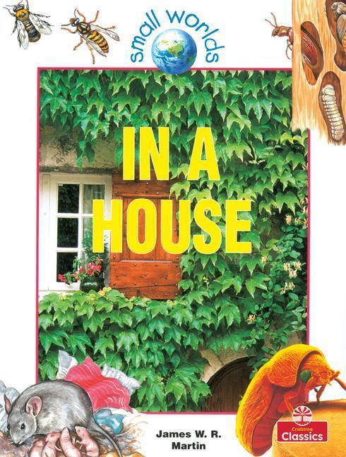 In a House als Taschenbuch