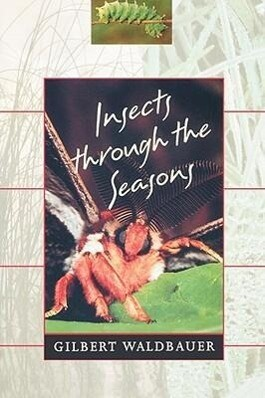 Insects Through the Seasons als Taschenbuch