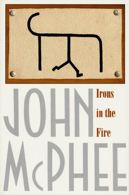 Irons in the Fire als Taschenbuch
