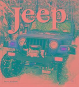 Jeep als Taschenbuch