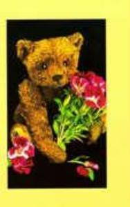 Teddy Bear Collectors Journal als Taschenbuch