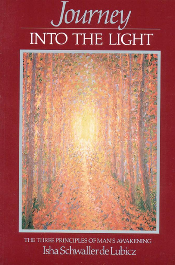 Journey Into the Light als Taschenbuch