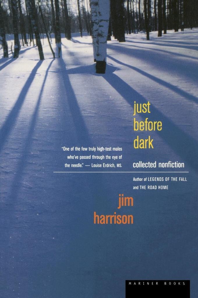 Just Before Dark als Taschenbuch