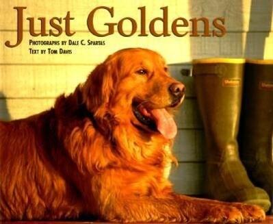 Just Goldens als Buch