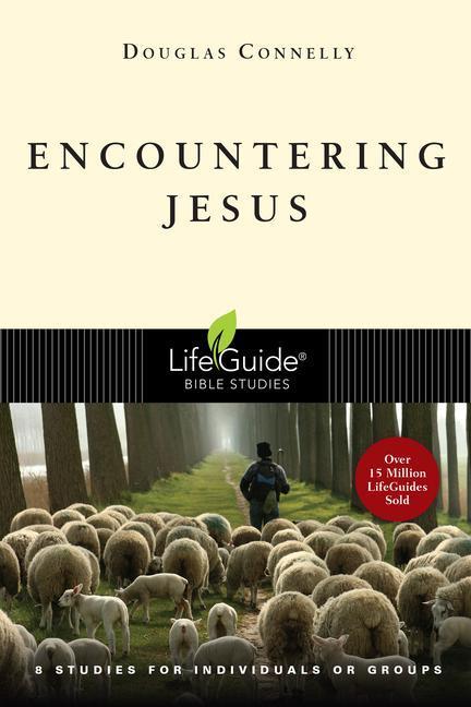 Encountering Jesus als Taschenbuch