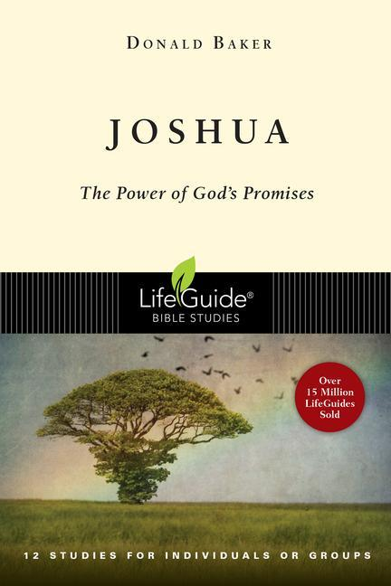 Joshua: The Power of God's Promises als Taschenbuch