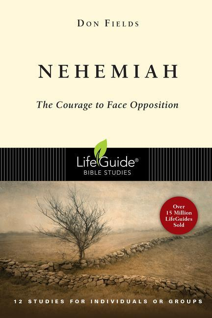 Nehemiah: Courage in the Face of Opposition als Taschenbuch