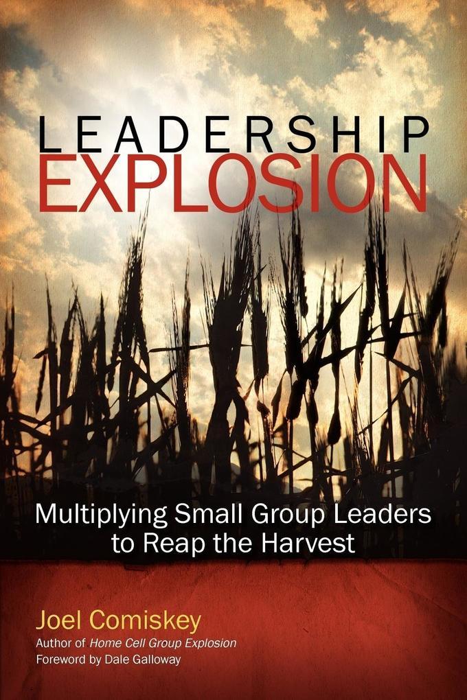 Leadership Explosion als Taschenbuch