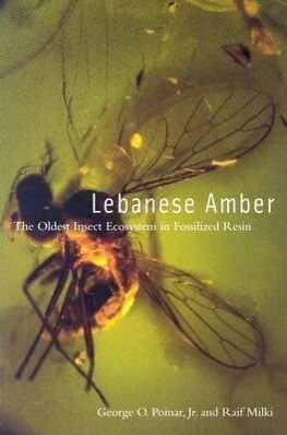Lebanese Amber: The Oldest Insect Ecosystem in Fossilized Resin als Taschenbuch