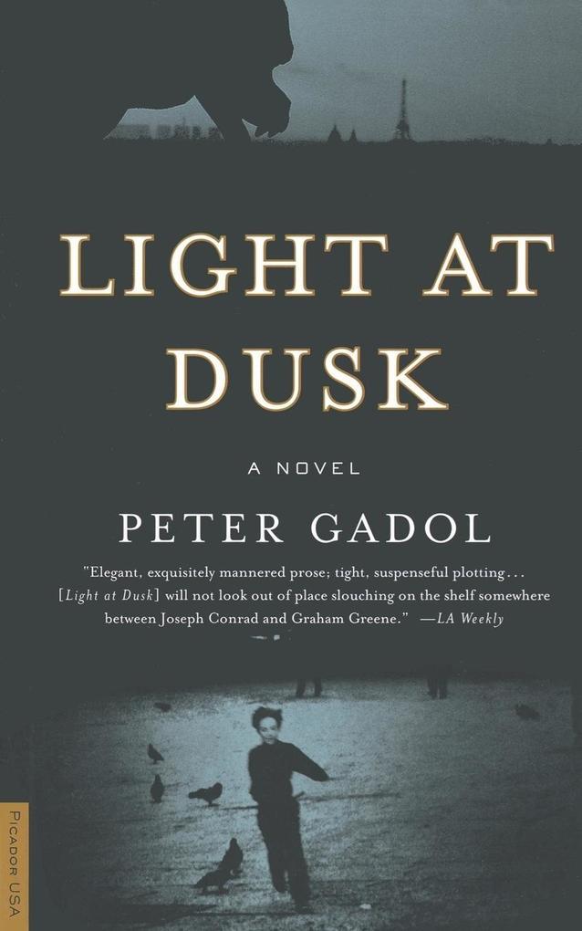 Light at Dusk als Taschenbuch