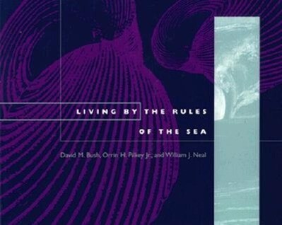 The Rules of the Sea - PB als Taschenbuch