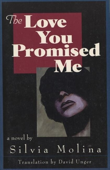 The Love You Promised Me als Taschenbuch