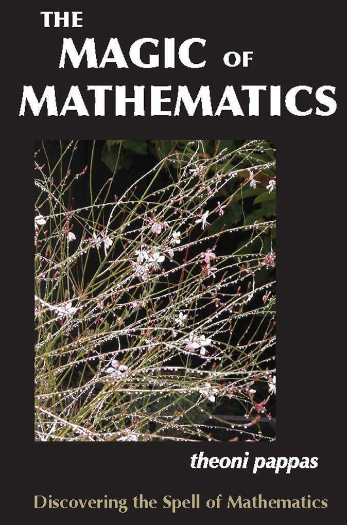 The Magic of Mathematics als Taschenbuch