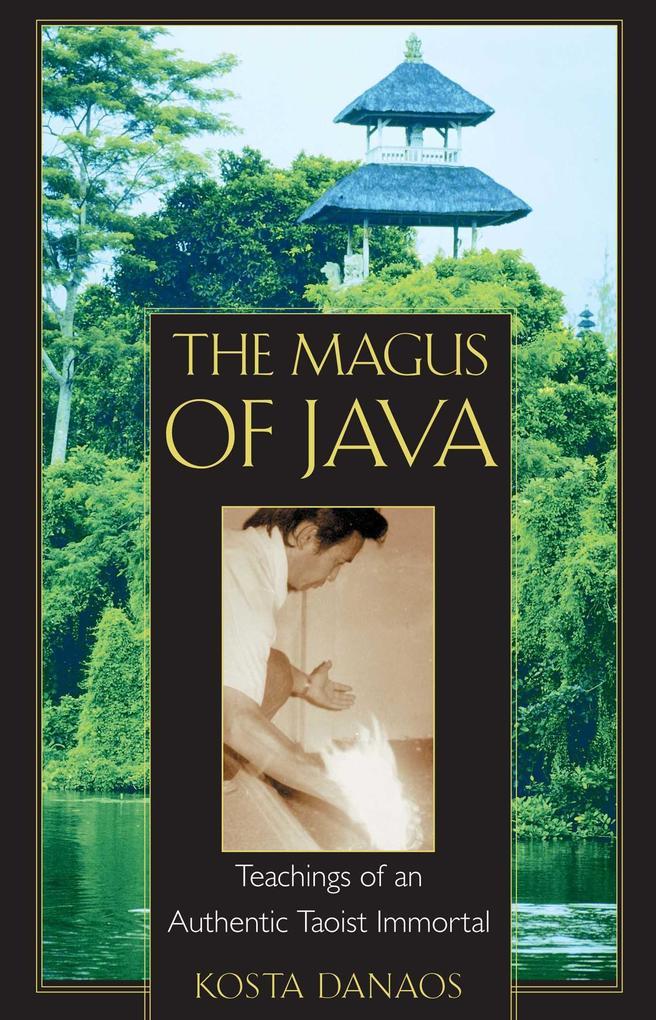 The Magus of Java als Taschenbuch