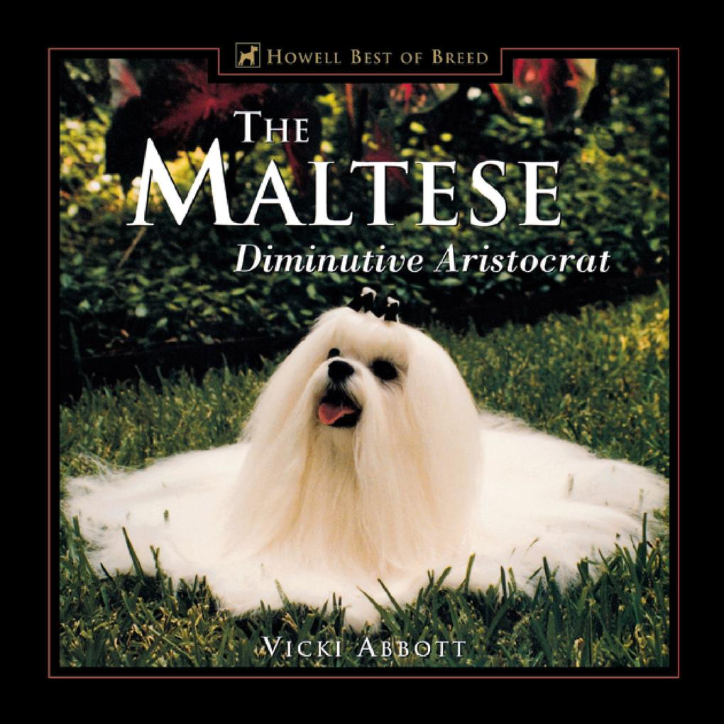 The Maltese: Diminutive Aristocrat als Buch