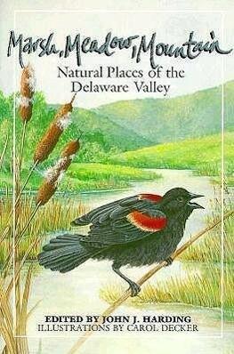 Marsh Meadow Mountain als Taschenbuch