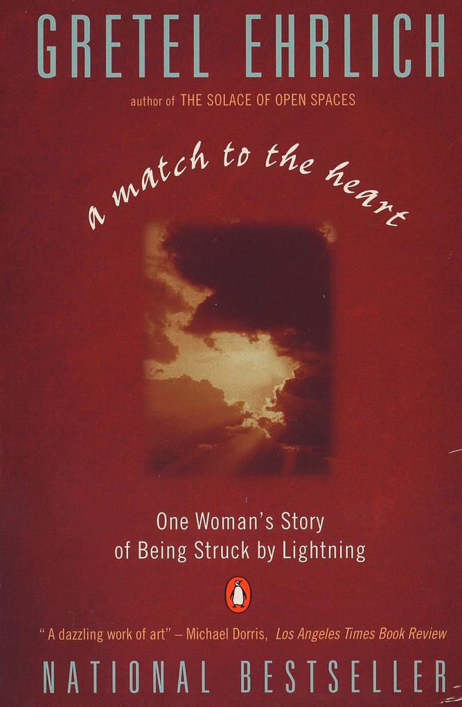 A Match to the Heart: One Woman's Story of Being Struck by Lightning als Taschenbuch