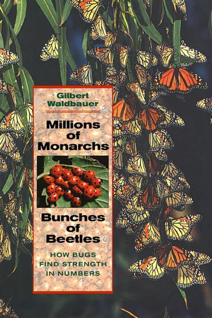 Millions of Monarchs, Bunches of Beetles: How Bugs Find Strength in Numbers als Taschenbuch