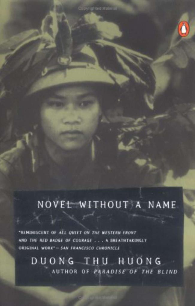 Novel Without a Name als Taschenbuch