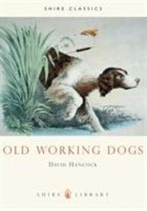 Old Working Dogs als Taschenbuch