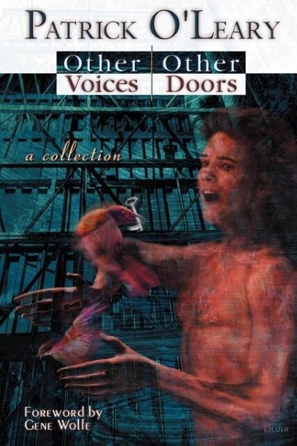 Other Voices, Other Doors: A Collection of Stories, Meditations and Poems als Taschenbuch