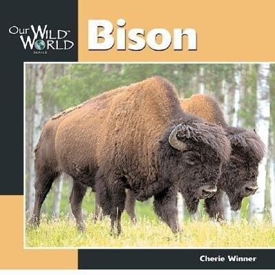 Bison als Taschenbuch