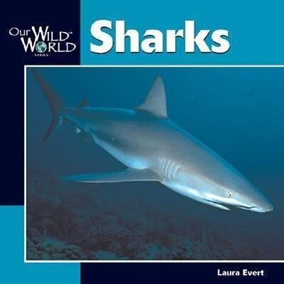 Sharks -OS als Taschenbuch