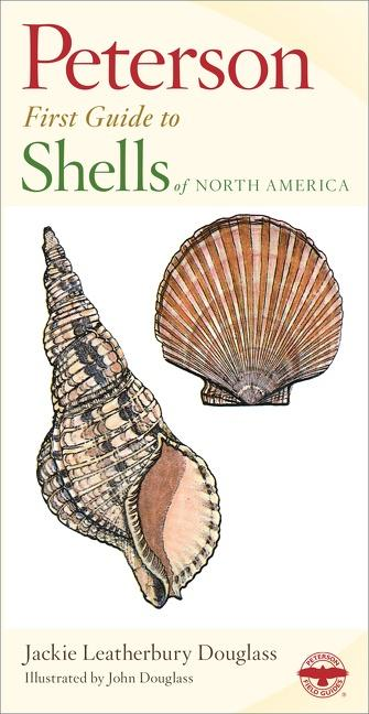 Shells of North America als Buch
