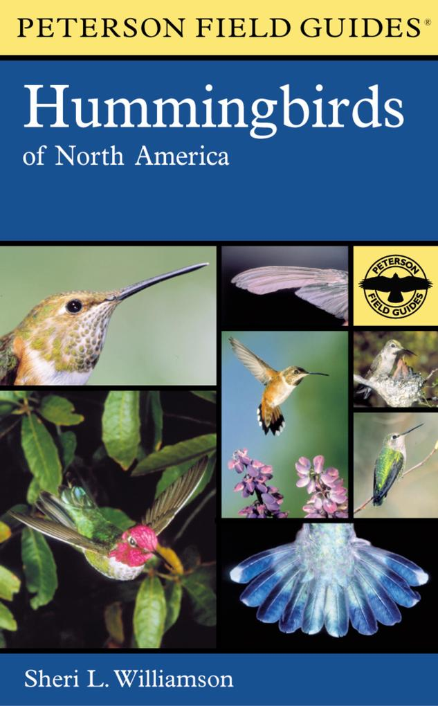 Hummingbirds of North America als Buch