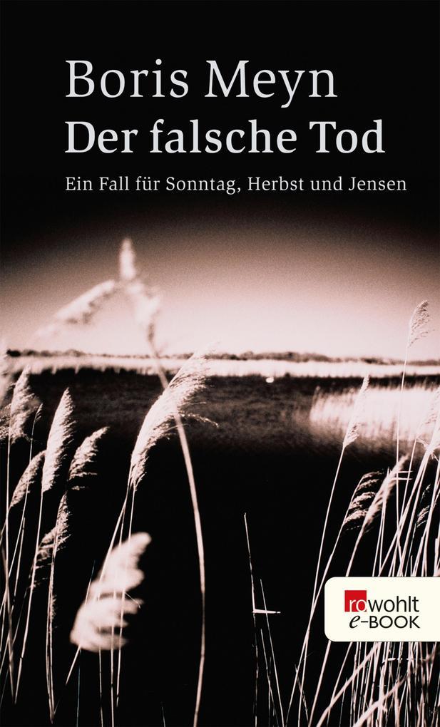 Der falsche Tod als eBook von Boris Meyn