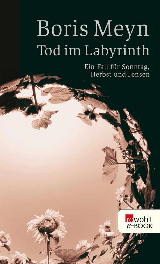Tod im Labyrinth als eBook von Boris Meyn
