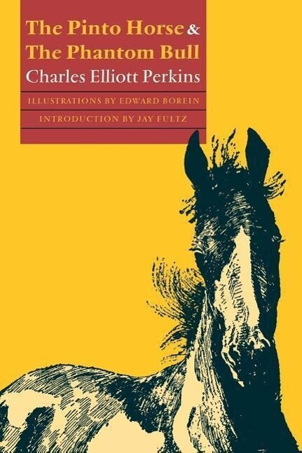 The Pinto Horse and the Phantom Bull als Taschenbuch