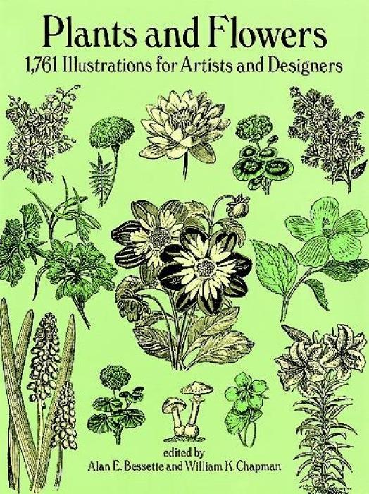 Plants and Flowers: 1761 Illustrations for Artists and Designers als Taschenbuch