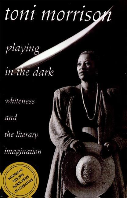 Playing in the Dark als Buch