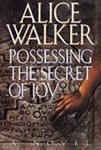 Possessing the Secret of Joy als Buch
